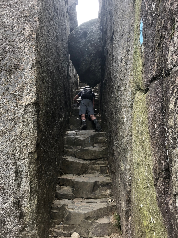 Going under a rock 2